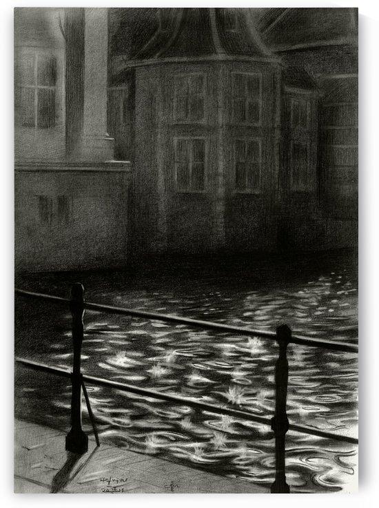 The Court's pond - 26-11-15 by Corné Akkers