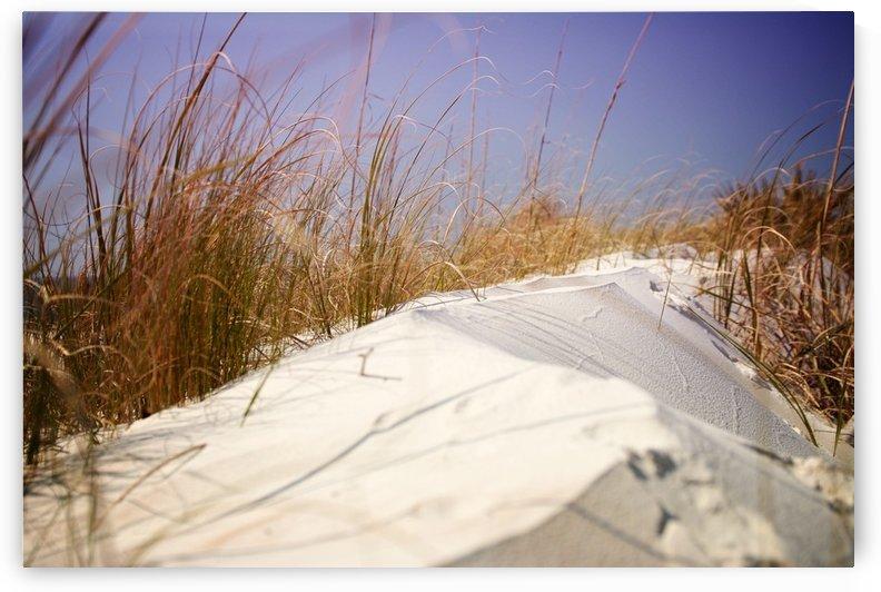 Florida Beach 2 by Christopher Dormoy