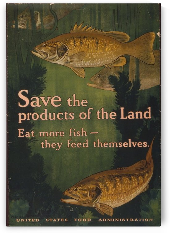 Save the fish by VINTAGE POSTER