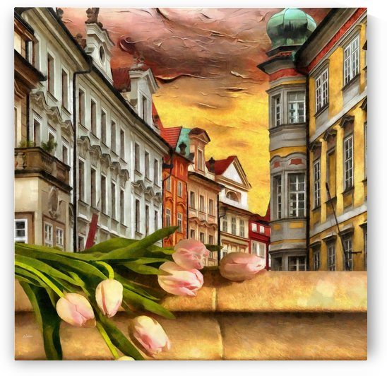 Looking Out At Prague by Liane Wright by Liane Wright