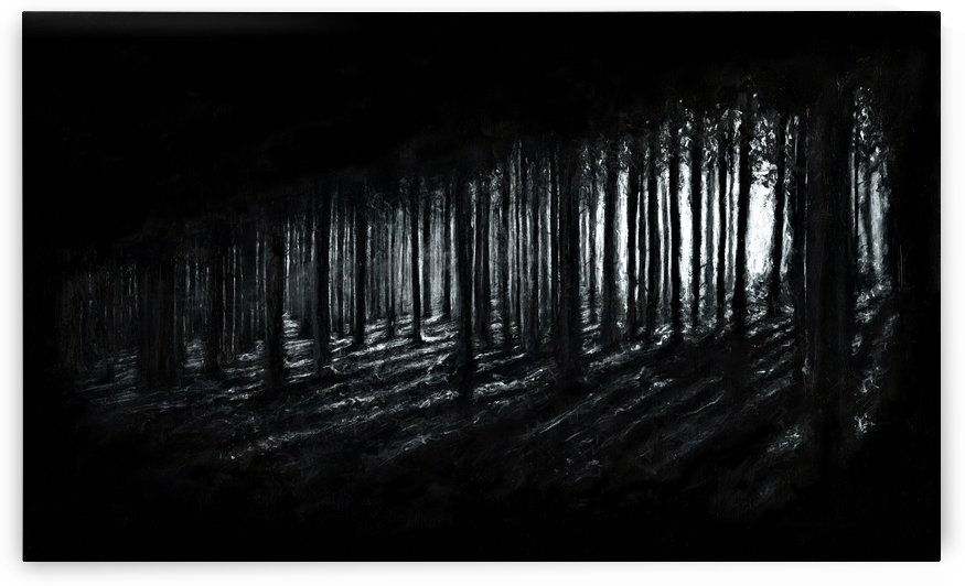 In the Woods by Christian Klute