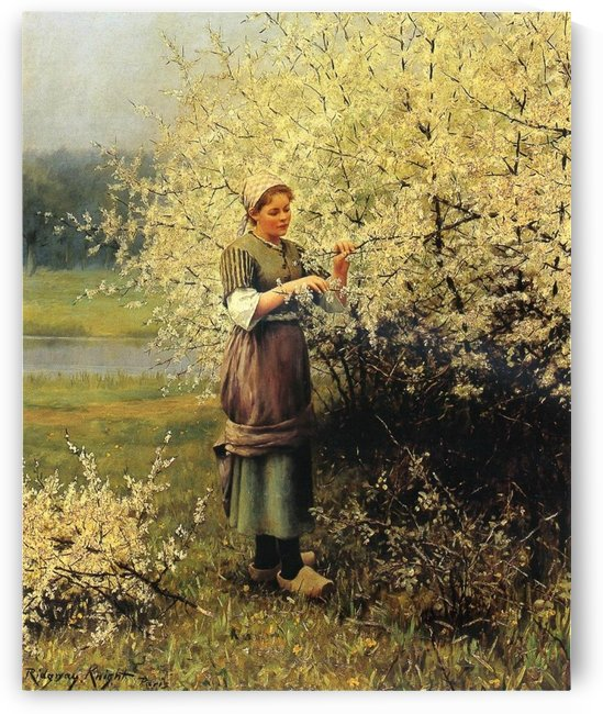 Spring blossoms by Daniel Ridgway Knight