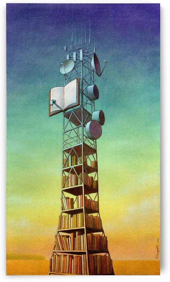 Library by Pawel Kuczynski