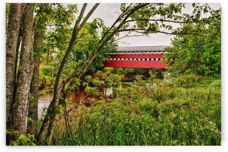 Covered Bridge by Michel Nadeau