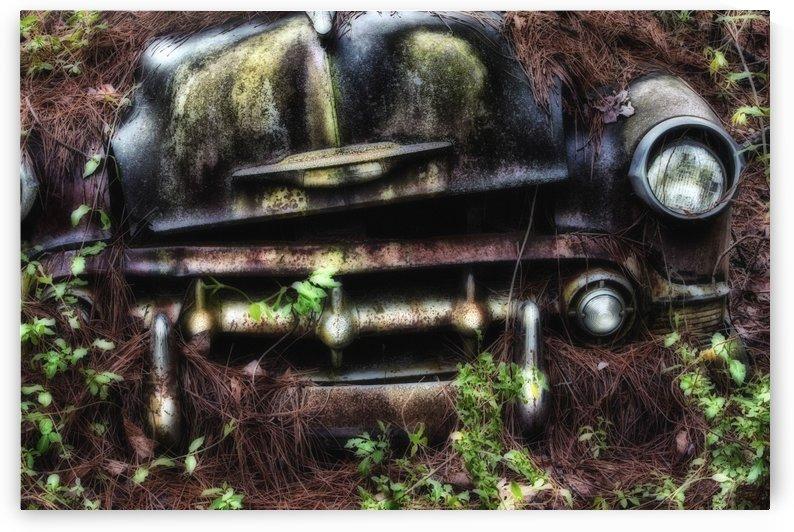 Old Car City  by Michel Nadeau