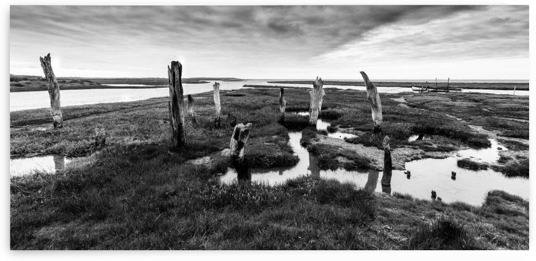 Coastal Marshland by Keith Truman