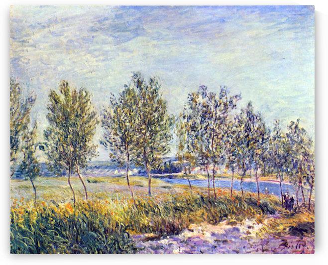 By meadow by Sisley by Sisley