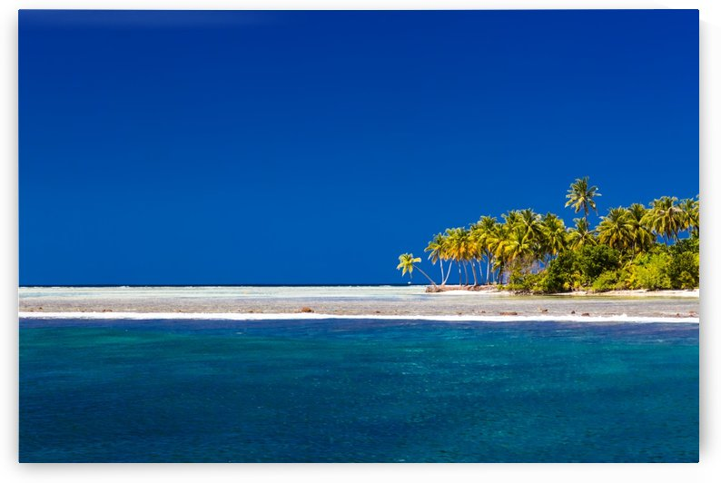 Tropical beach background by Levente Bodo