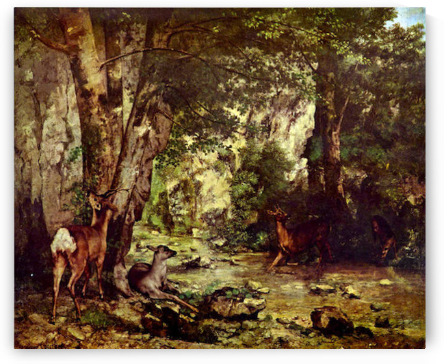 Deer in the Woods by Courbet by Courbet