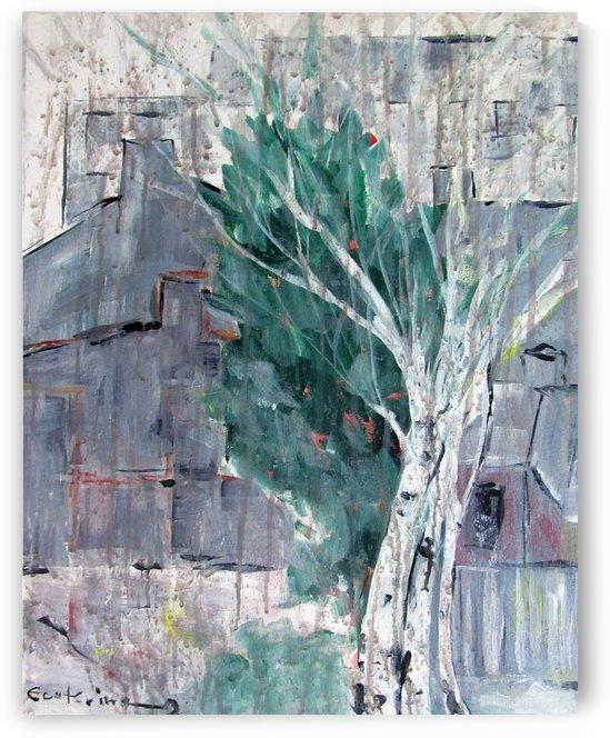 Between houses - rain by Ecaterina