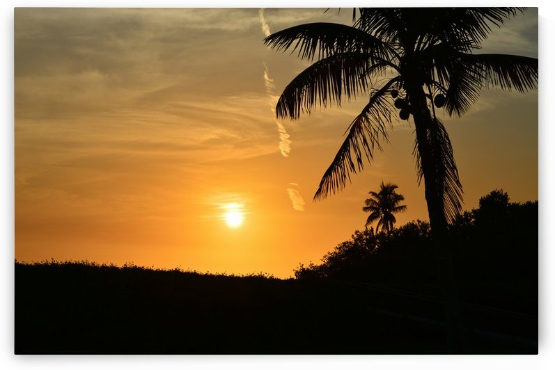 Tropic Sunset II by Digitalu Photography