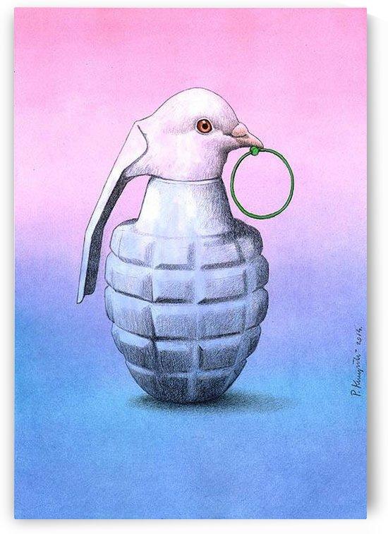 Peace  -  Pawel Kuczynski by Pawel Kuczynski
