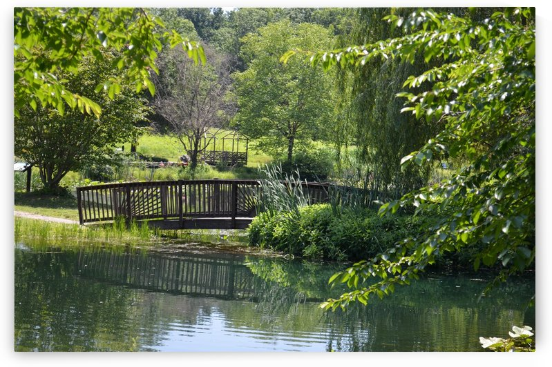 Bridge over pond by BK