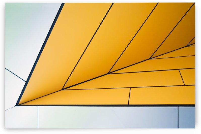 yellow dart by 1x