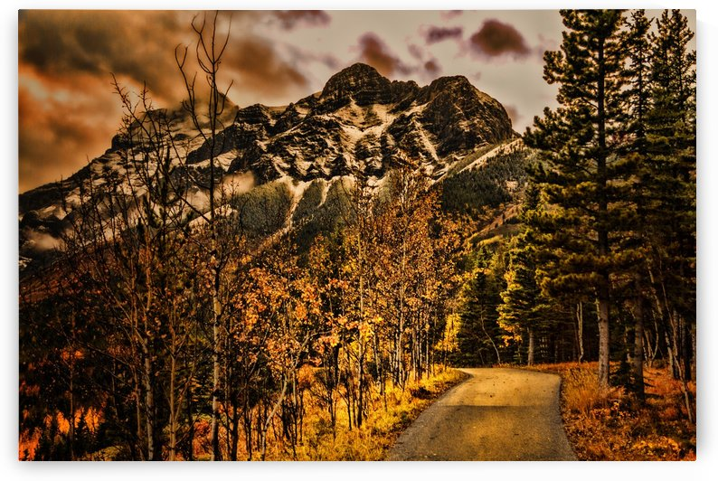 Rocky Mountain Way by Scott Hryciuk