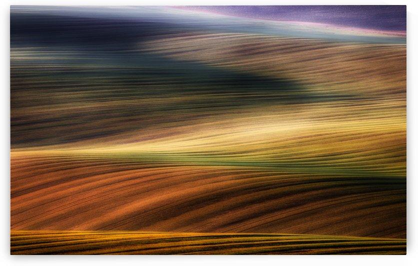 autumn fields by 1x