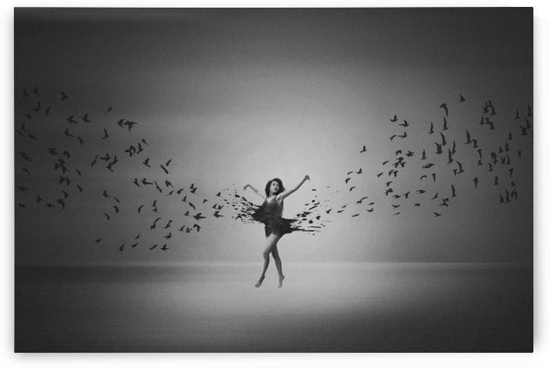 Ballerina flight of Birds by 1x