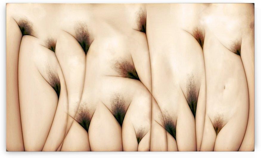 vaginae terram by 1x
