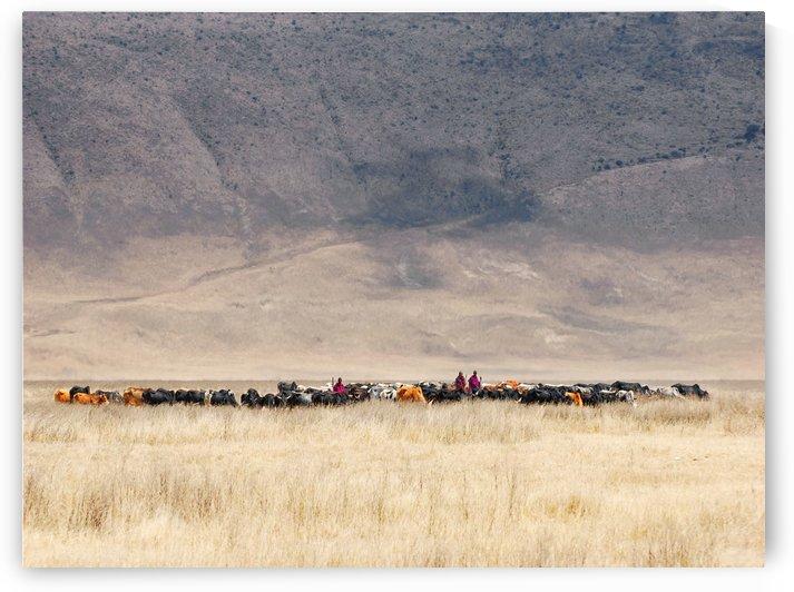 Incredible Maasai by 1x
