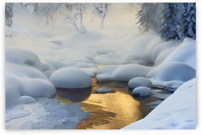 Siberia. -37A°C (-35A°F) by 1x