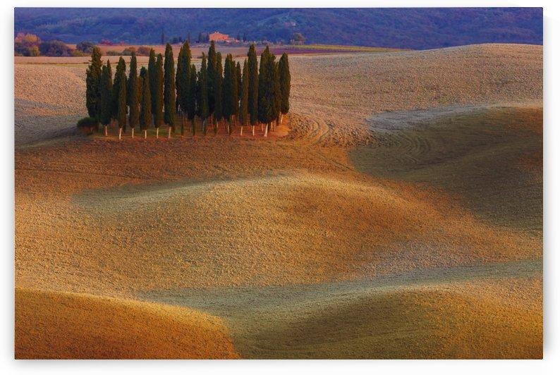 Toscana by 1x