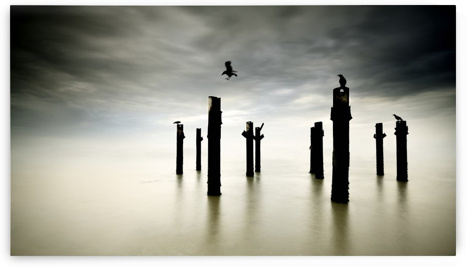 The Sentinels by 1x