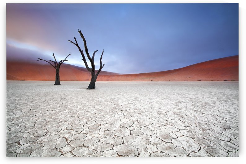 Mist over Deadvlei by 1x