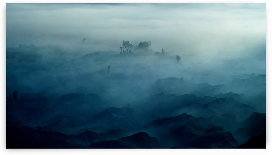 Land of Fog by 1x