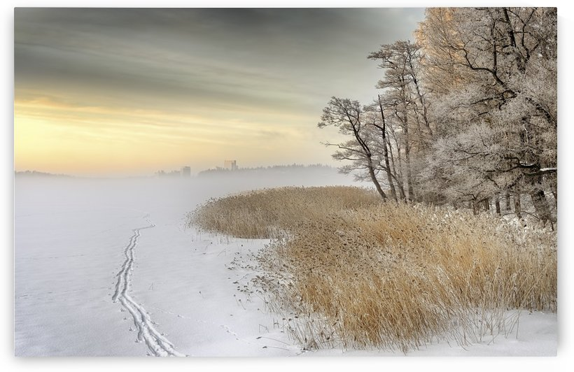Misty winter morning by 1x