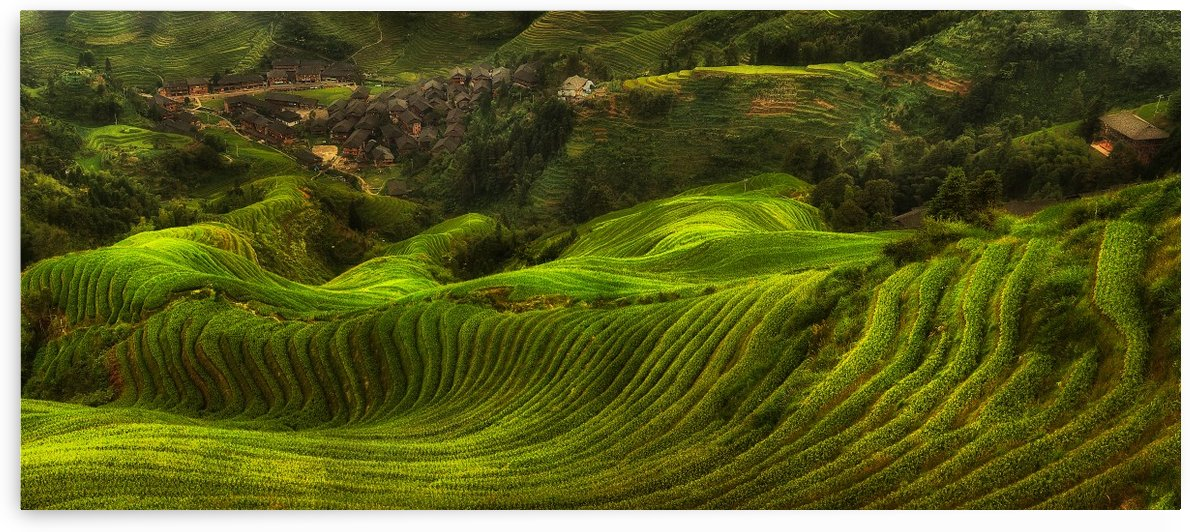waves of rice - the dragon's backbone by 1x
