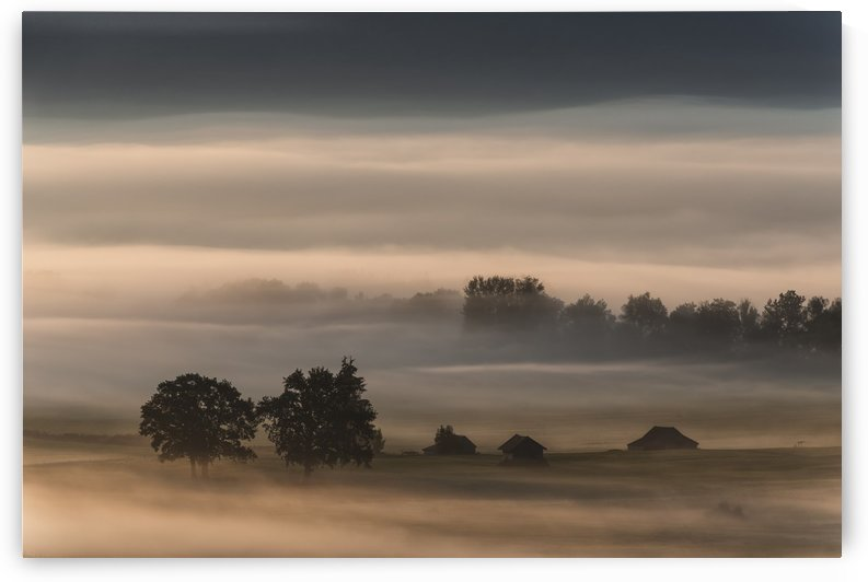 Dense fog over the moos... by 1x