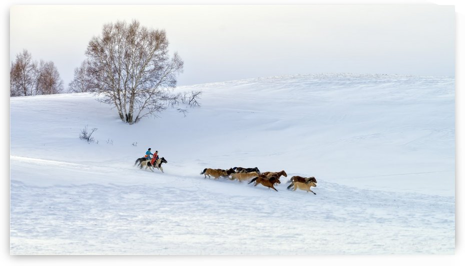 Racing on snow by 1x