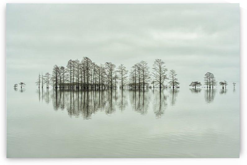 Lake-shore Lineup Beauty by 1x