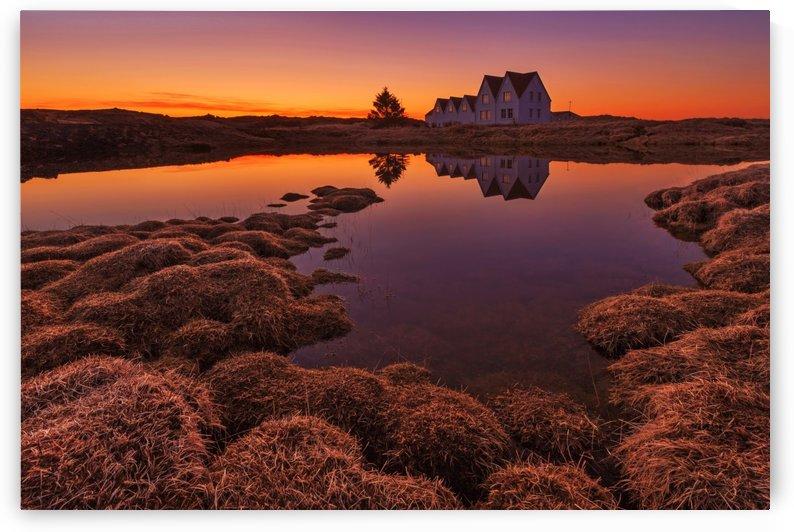 Purple Sunset by 1x
