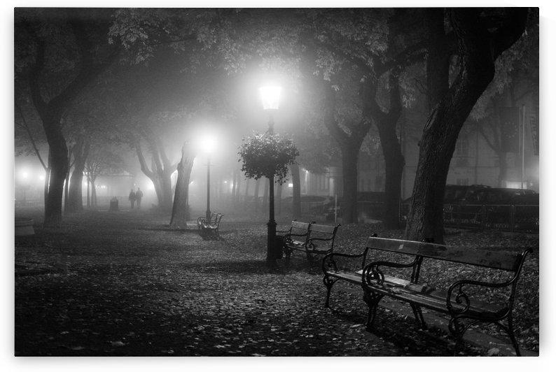 Foggy Day by 1x