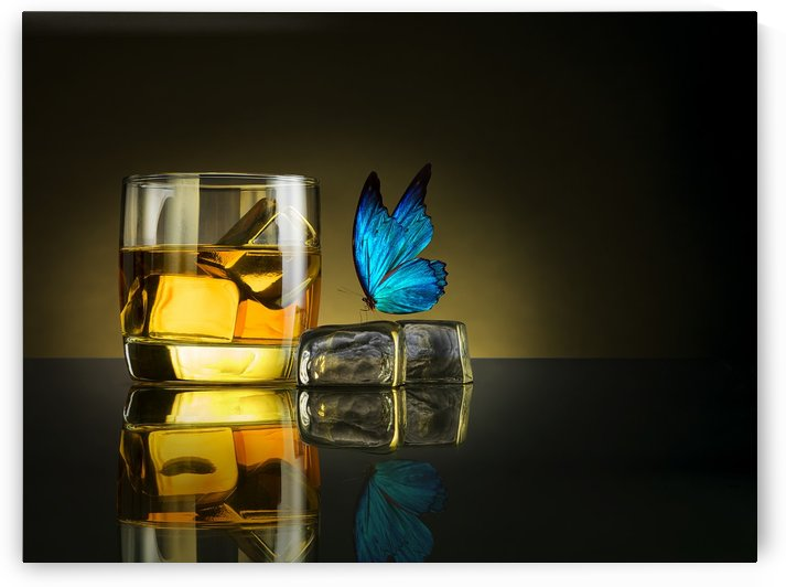 Butterfly Drink by 1x