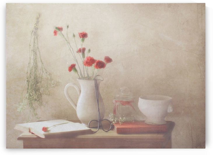 The Red Flowers by 1x