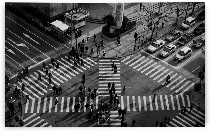 Intersection ( Crossing Alternatives ) by 1x