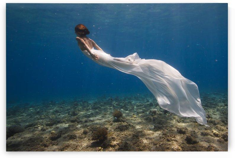 White Dress by 1x