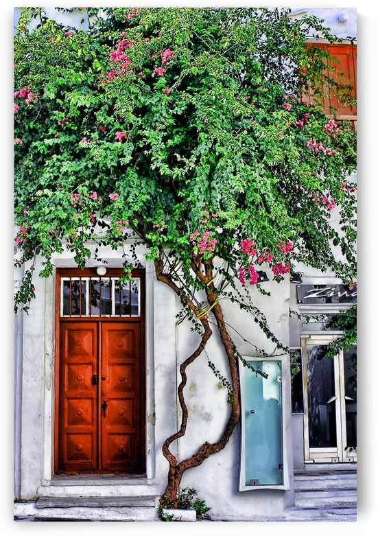 the door mykonos  by tom Prendergast