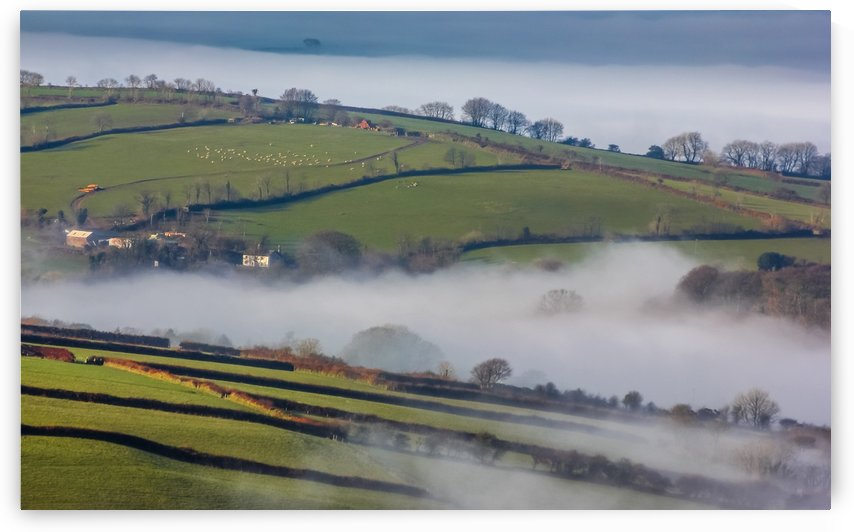 Agricultural mist by Andrew Turner