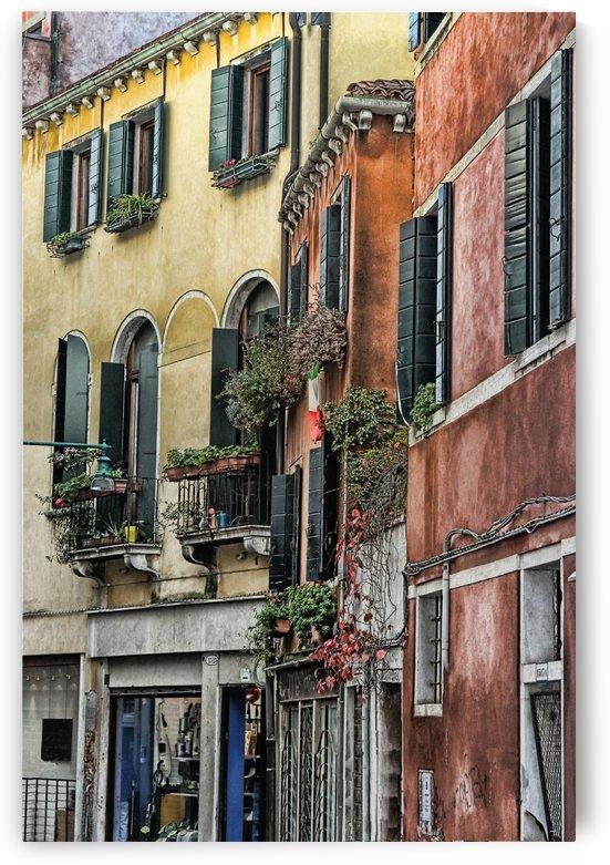 windows in Venice by tom Prendergast