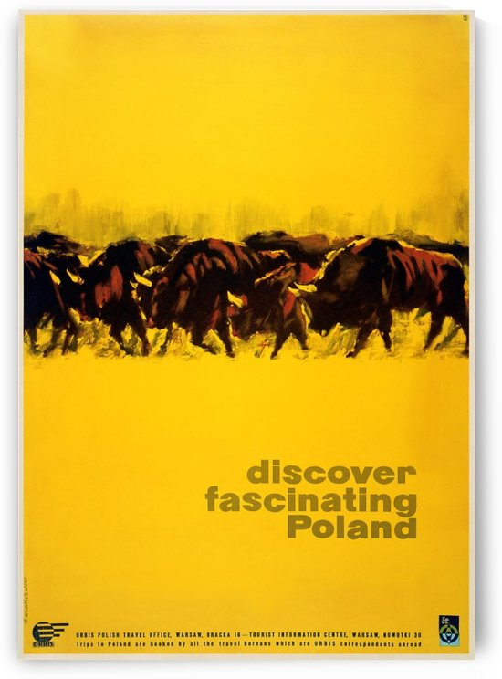 Discover Poland Buffalos Polish travel poster by VINTAGE POSTER