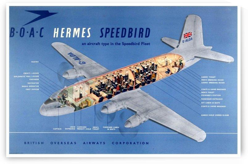 BOAC Hermes Speedbird Aircraft Fleet by VINTAGE POSTER