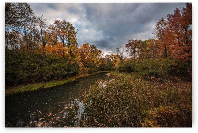 River side by Ara Samson