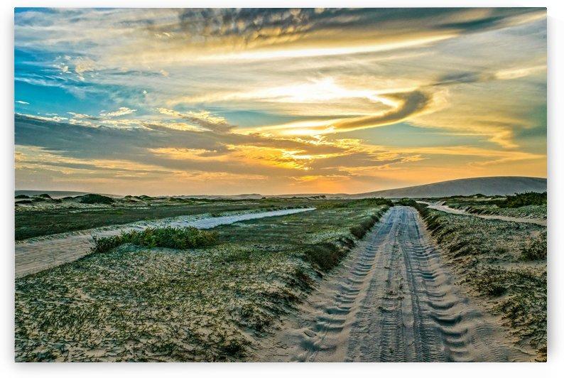 Jericoacoara National Park Dunes Road copia by Daniel Ferreia Leites Ciccarino