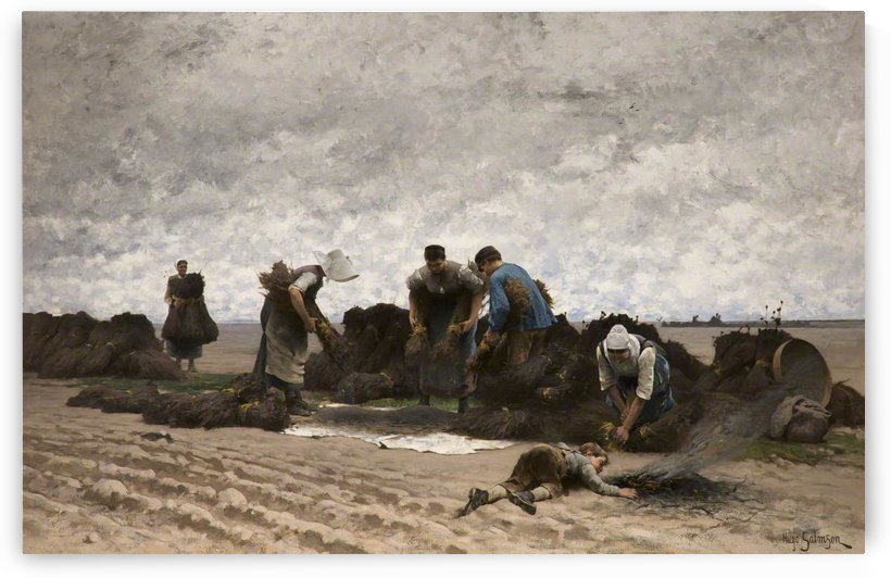 Poppy seed gatherers of Northern France by Hugo Salmson