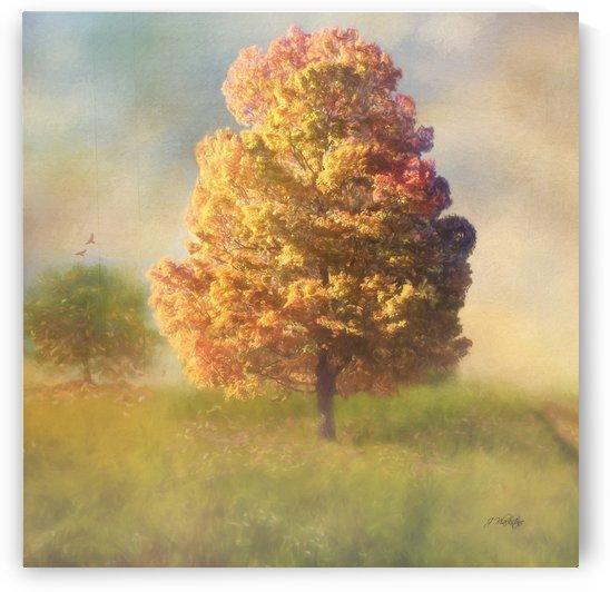 A Poem Lovely as a Tree by Jordan Blackstone by Jordan Blackstone