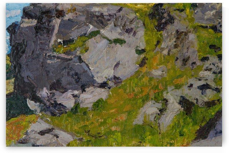 Field with rocks by Edward Henry Potthast