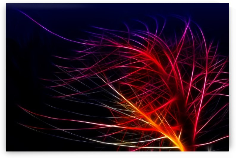 Lines Background Abstract Light Irrlichter Lights by STOCK PHOTOGRAPHY